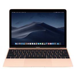 MacBook Retina: 256 GB - Gold