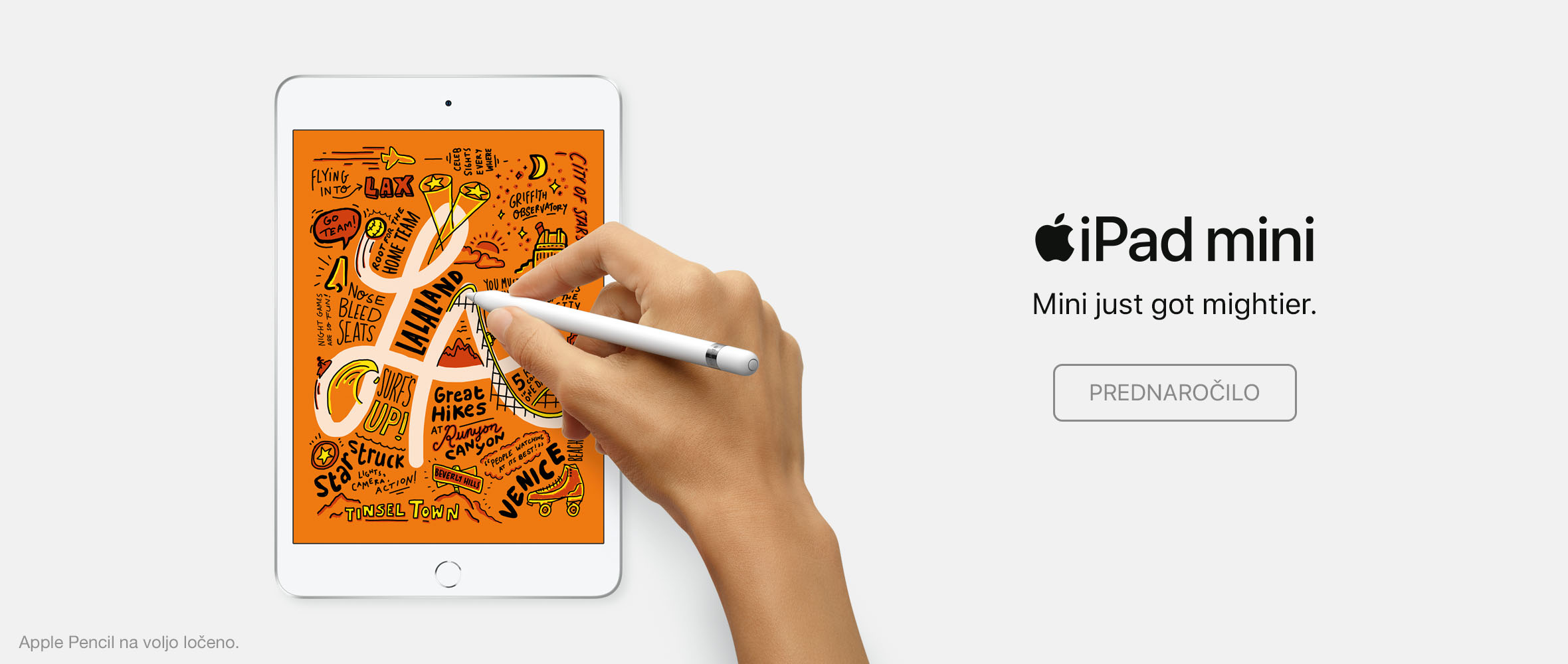 SI - NPI iPad mini